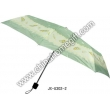 Orange Umbrella