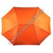 Lover umbrella