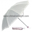 Color Point Umbrella